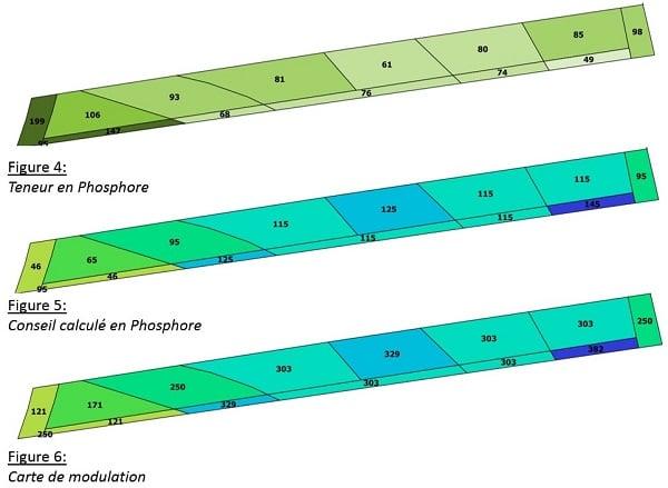 phosphore 3