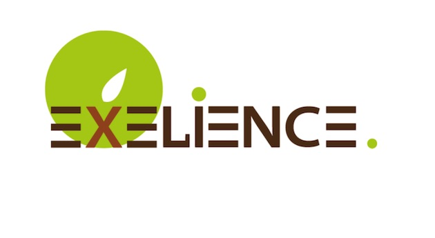Excelience